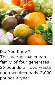 disposal facts